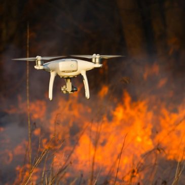Forest Fire Early Warning System