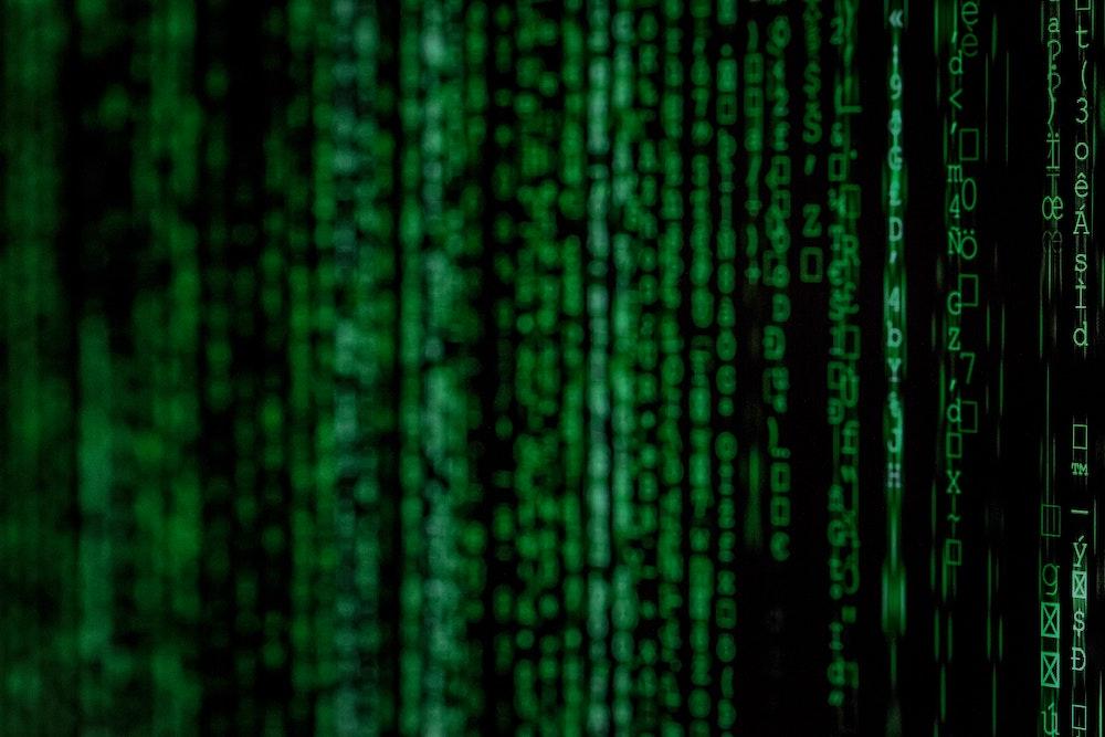 formato digital de las personas